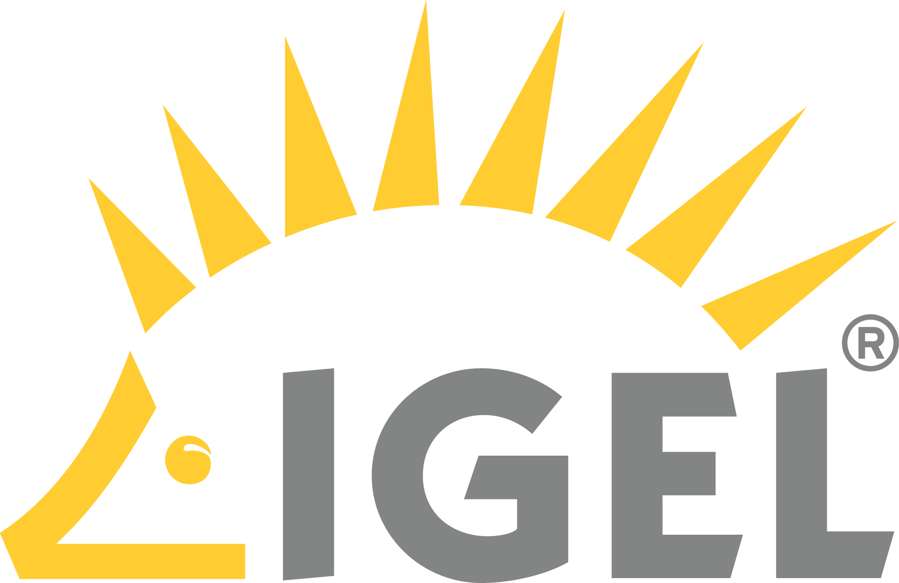 IGel official logo